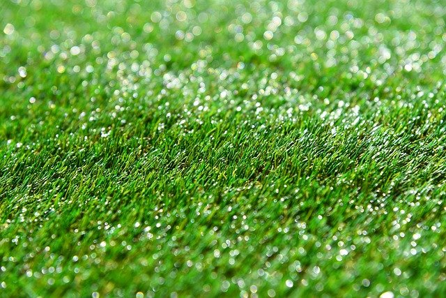 Synthetic Grass Vs Natural Grass